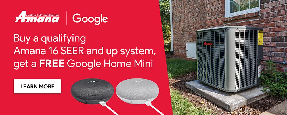 Amana Free Google Mini Promo